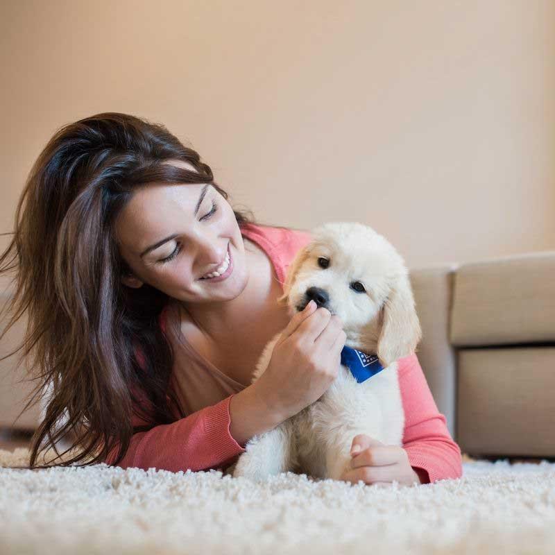 kada je pravo vreme za odvajanje štenaca od majke